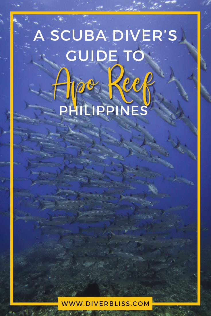 A Scuba diver's guide to Scuba Diving in Apo Reef, Occidental Mindoro, Philippines. Something to look forward to is the school of barracudas!