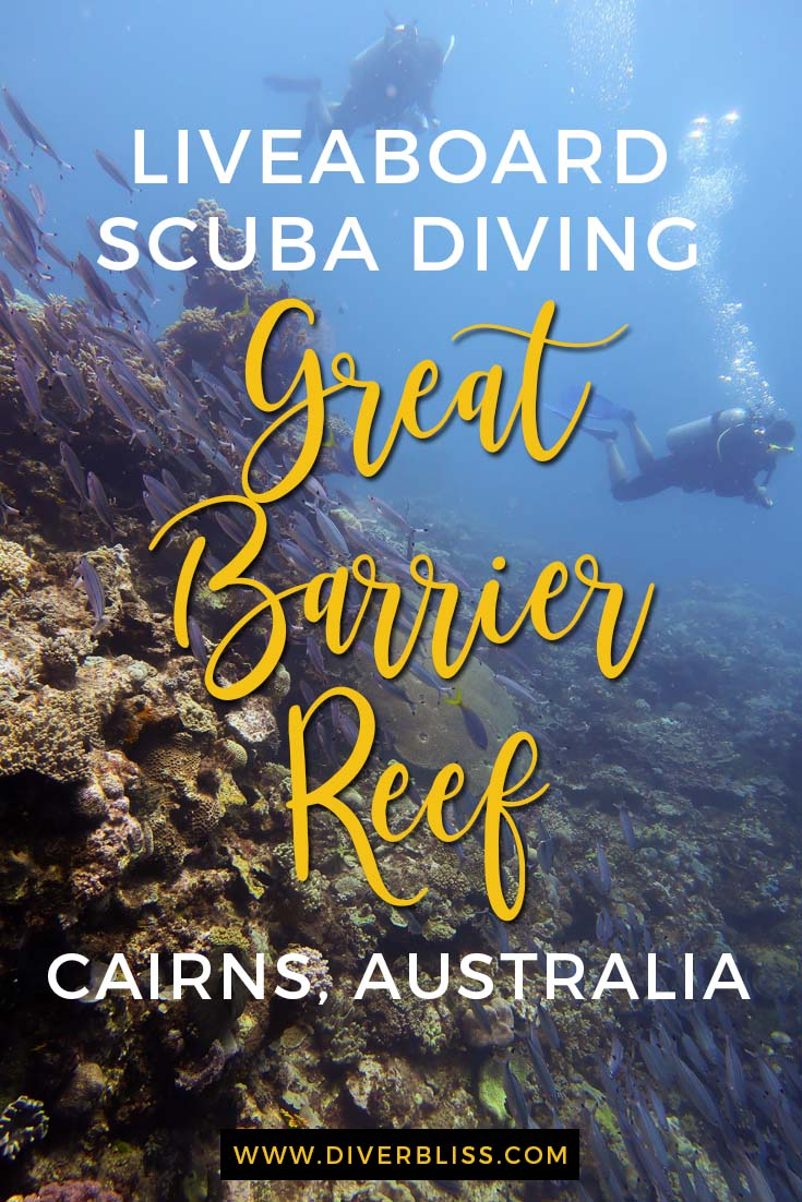 Liveaboard Scuba Diving in the Great Barrier Reef