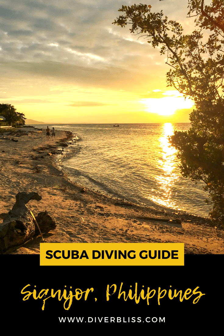 Scuba Diving Guide for Siquijor Island, Philippines