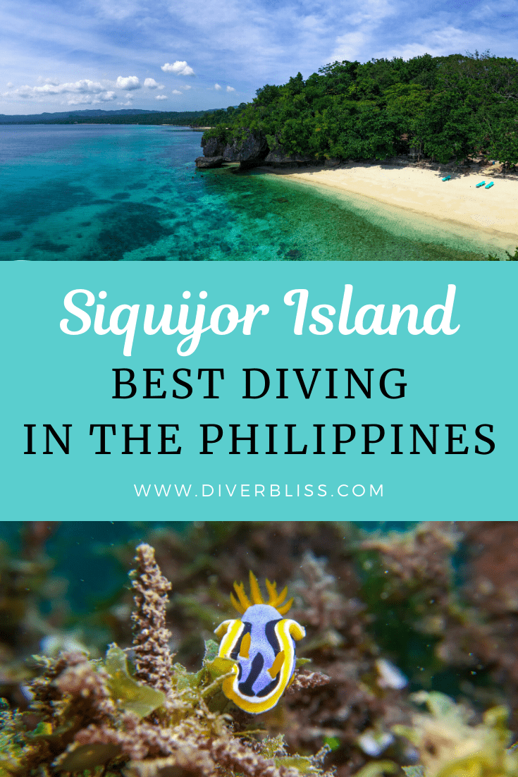Siquijor Island Best Diving in the Philippines- Pin this for Later!