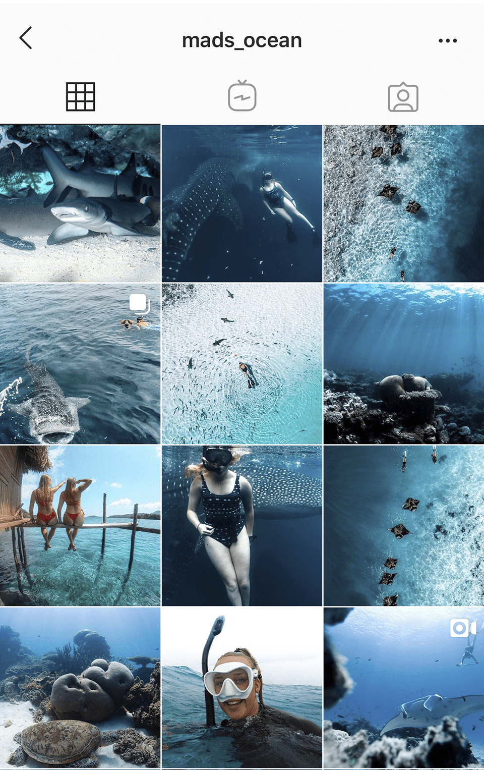 @mads_ocean use hues of blue for her diving instagram account