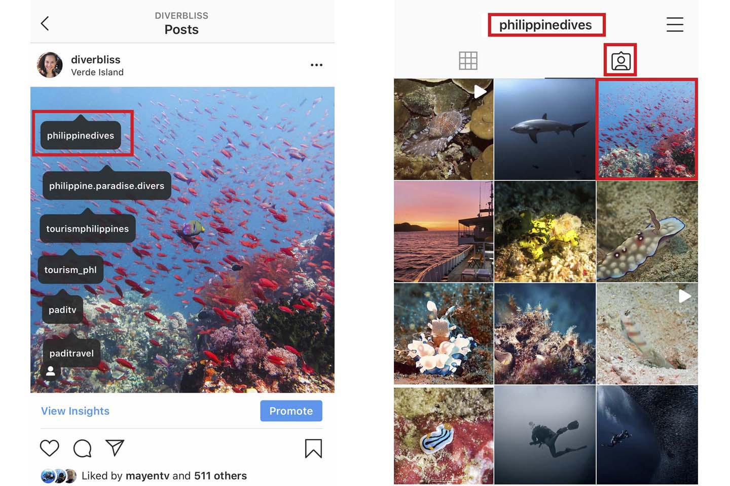 grow your ocean-inspired instagram account by tagging brands and other ocean advocates