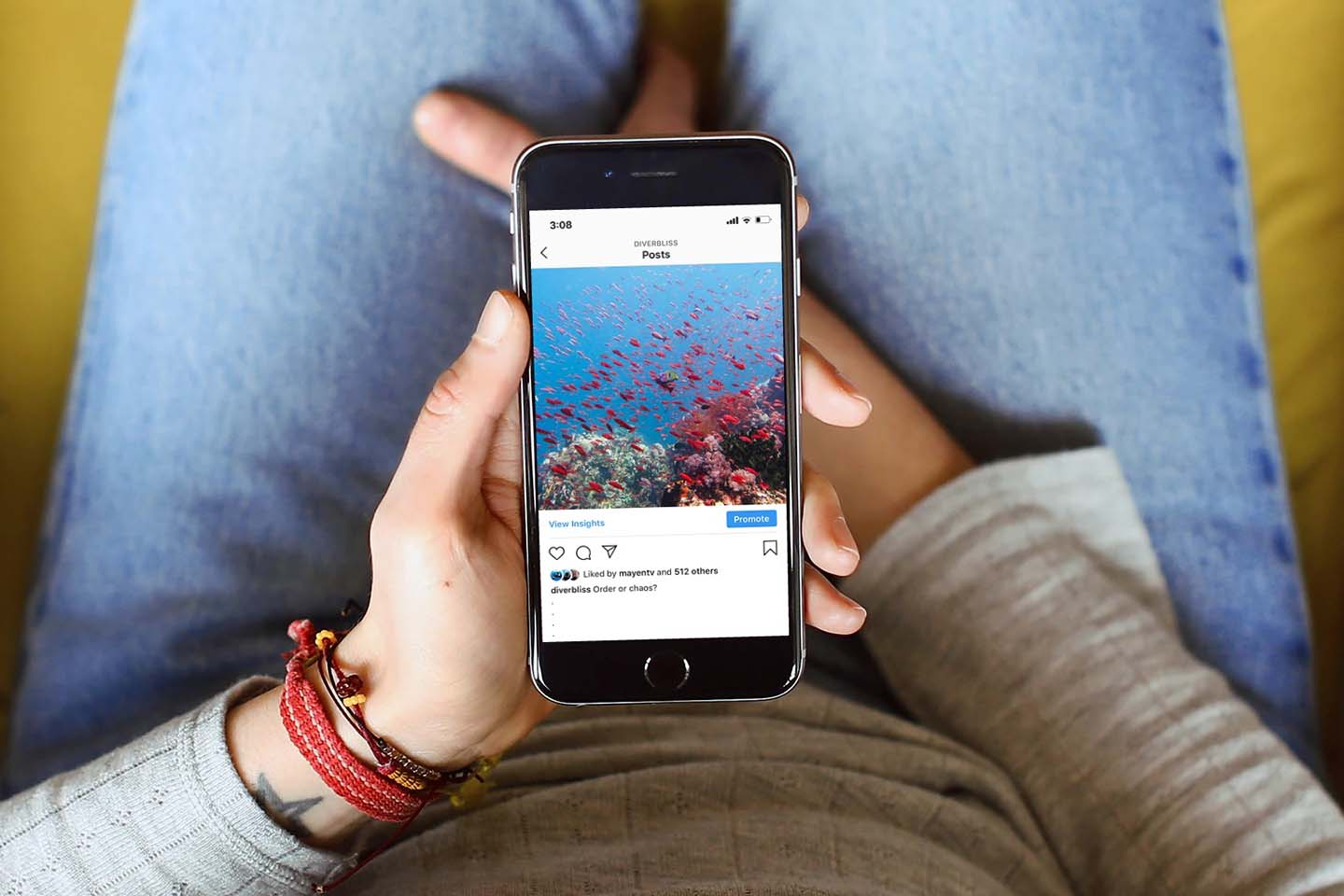 How to Grow your Instagram to Advocate for the Ocean