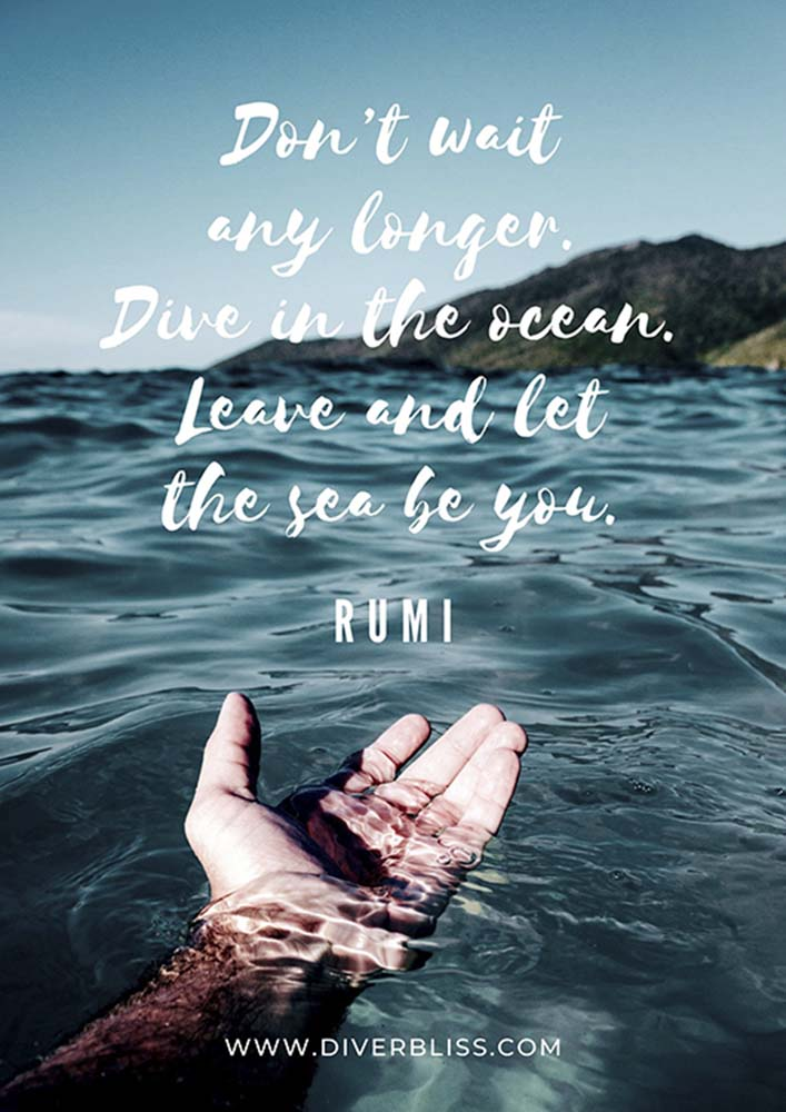 """Diving Poster: """"Don't wait any longer. Dive in the ocean, Leave and let the sea be you."""" - Rumi"""