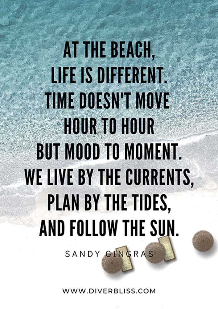 """Beach Quotes:  """"At the beach, life is different. Time doesn't move hour to hour but mood to moment. We live by the currents, plan by the tides, and follow the sun.""""- Sandy Gingras"""