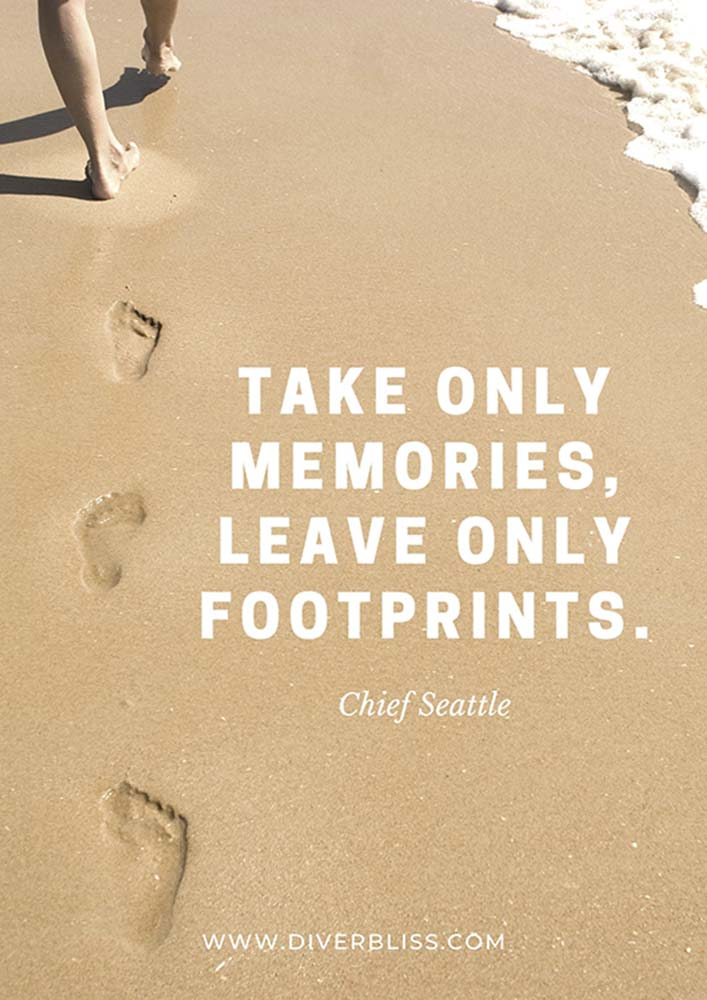"""Sustainable Travel Quotes: """"Take only memories, leave only footprints."""" -Chief Seattle"""