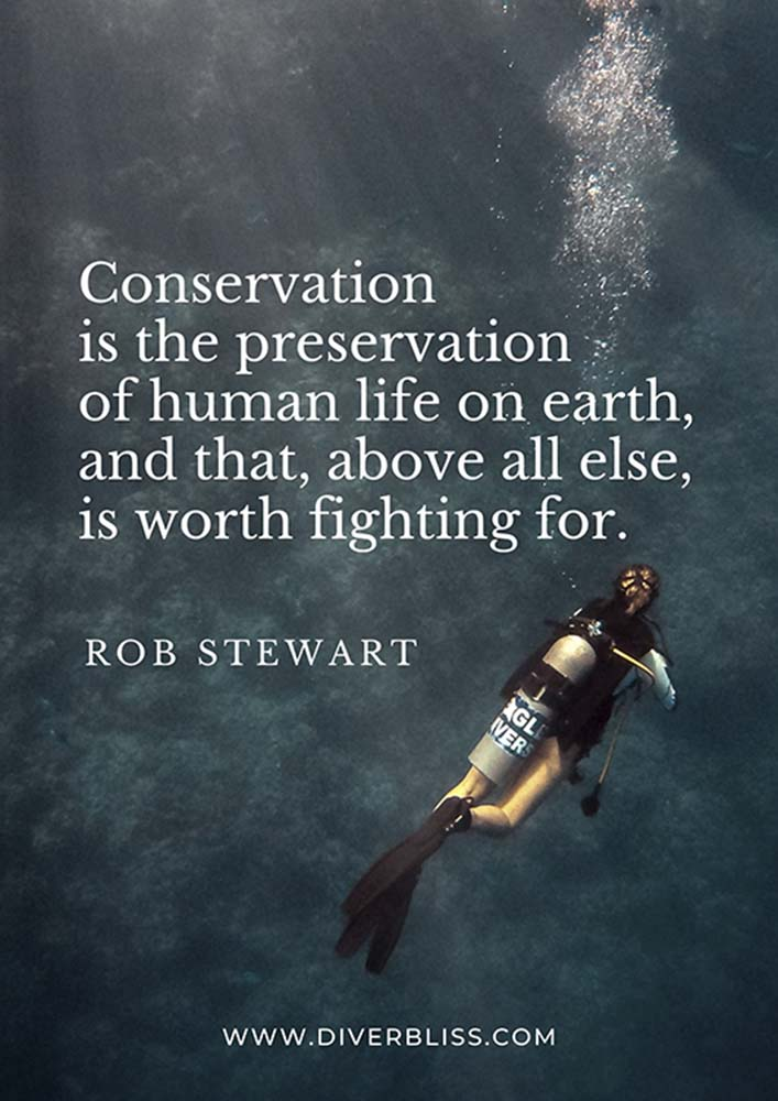 """Conservation Quotes Poster:  Conservation is the preservation of human life on earth, and that, above all else, is worth fighting for."""" - Rob Stewart"""