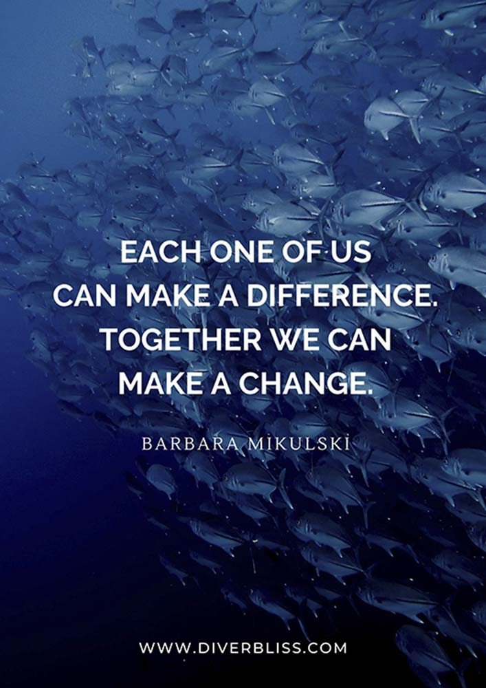 """Conservation Quotes Poster: """"Each one of us can make a difference. Together we can make a change."""" - Barbara Mikulski"""