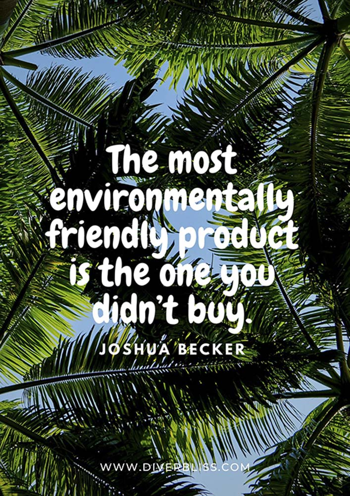 """Plastic Pollution Quotes Poster: """"The most environmentally friendly product is the one you didn't buy."""" - Joshua Becker"""