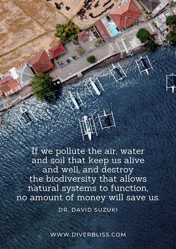 """Plastic Pollution Quotes Poster: """"If we pollute the air, water and soil that keep us alive and well, and destroy the biodiversity that allows natural systems to function, no amount of money will save us.""""- Dr. David Suzuki"""