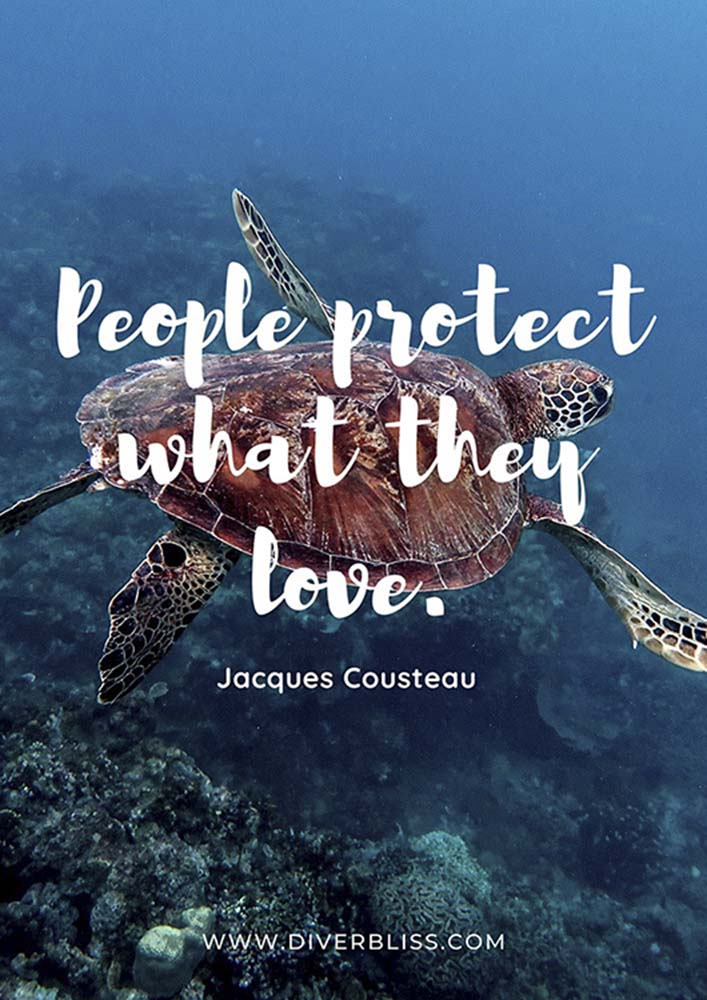 """Diving Quotes Poster: """"People protect what they love.""""- Jacques Cousteau"""