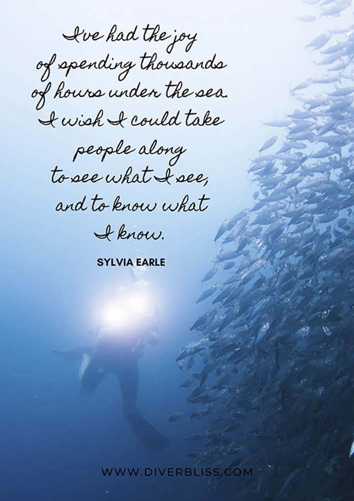 """Scuba Diving Poster: """"I've had the joy of spending thousands of hours under the sea. I wish I could take people along to see what I see, and to know what I know."""" - Sylvia Earle"""
