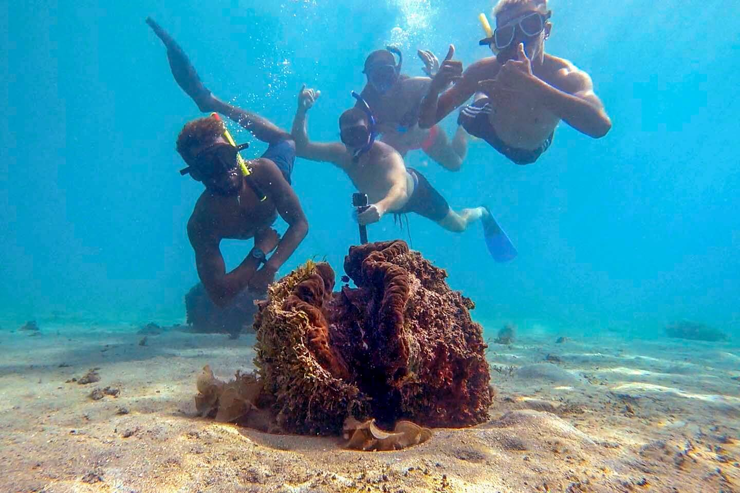 Checking out the giant clams in Makogai Island