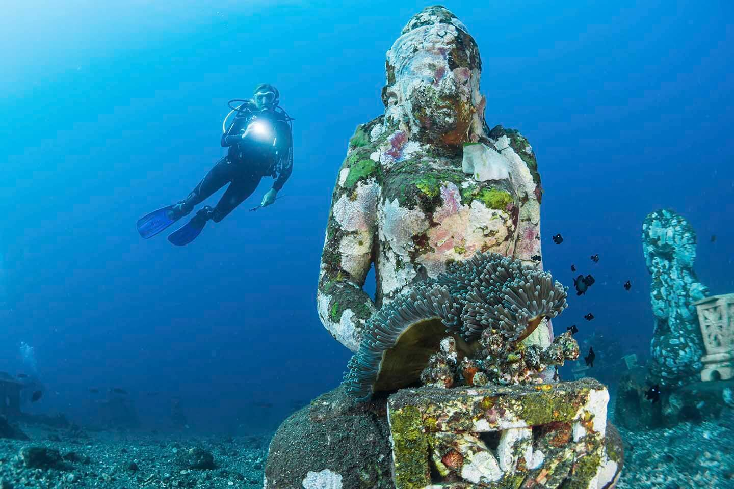 Why you should log your dives: record your bucket list dives