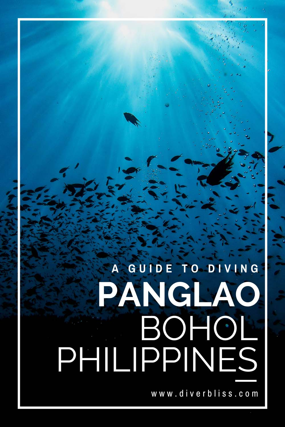 A guide to diving Panglao Bohol Philippines