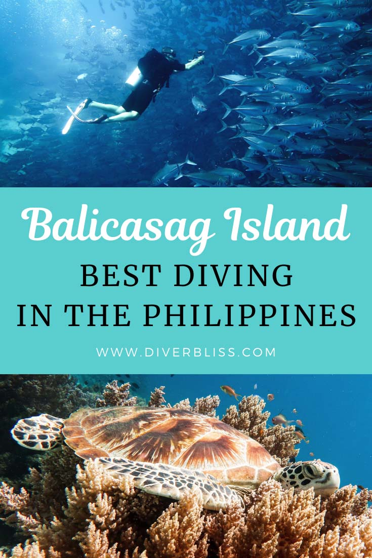 Balicasag Island Best Diving ni the Philippines