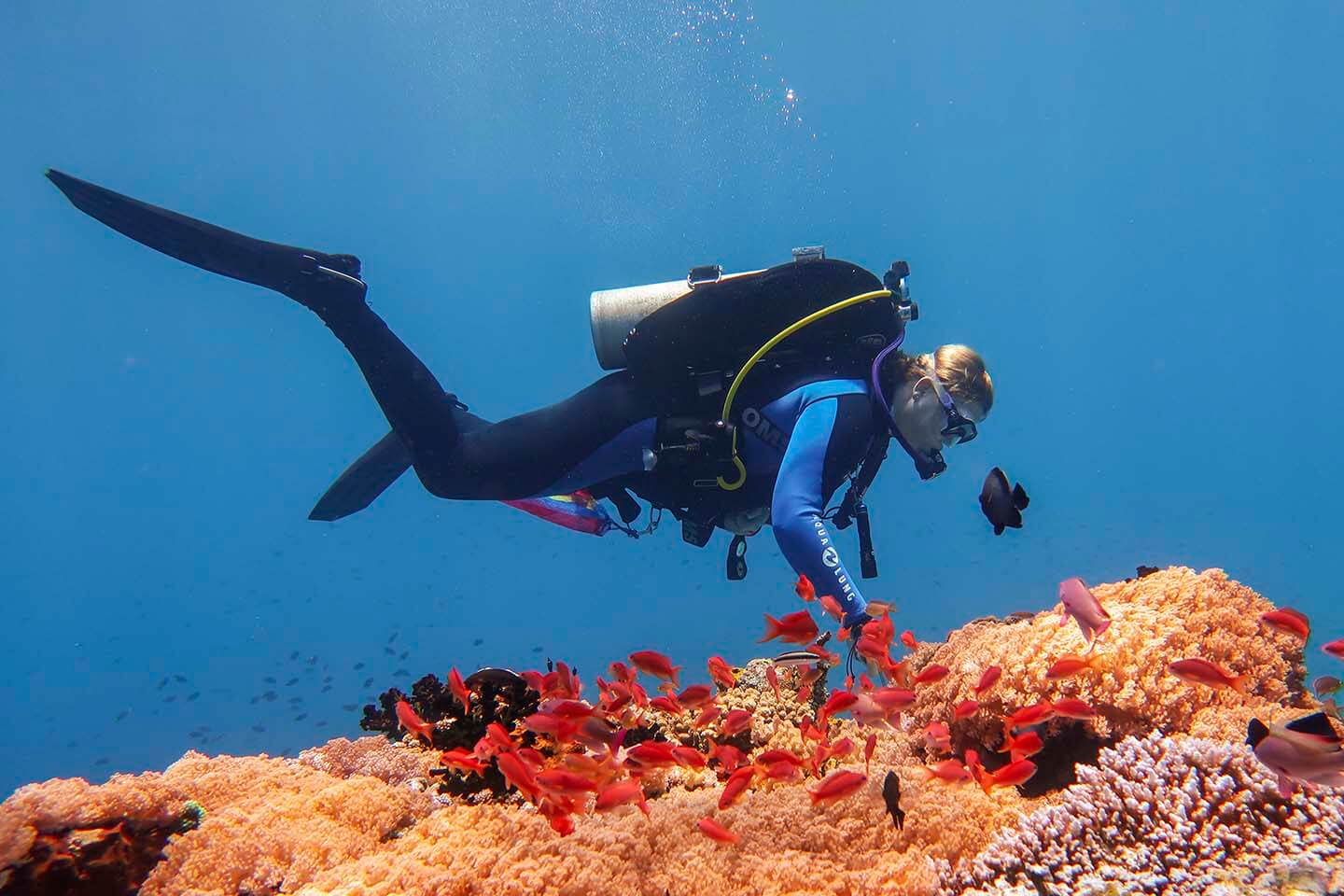 Dive buddy, Sam Arnold, Diving in Anilao during PADI Women's Dive Day.