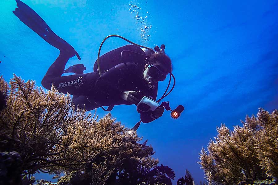 5 Underwater Photography Mistakes You Can Easily Avoid As a Beginner