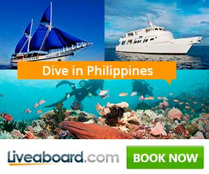 Surprise Her with a Liveaboard Trip
