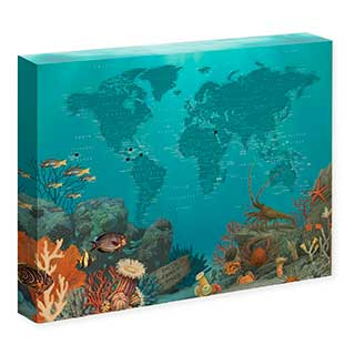 Personalized Diving World Push Pin Travel Map for Scuba Divers