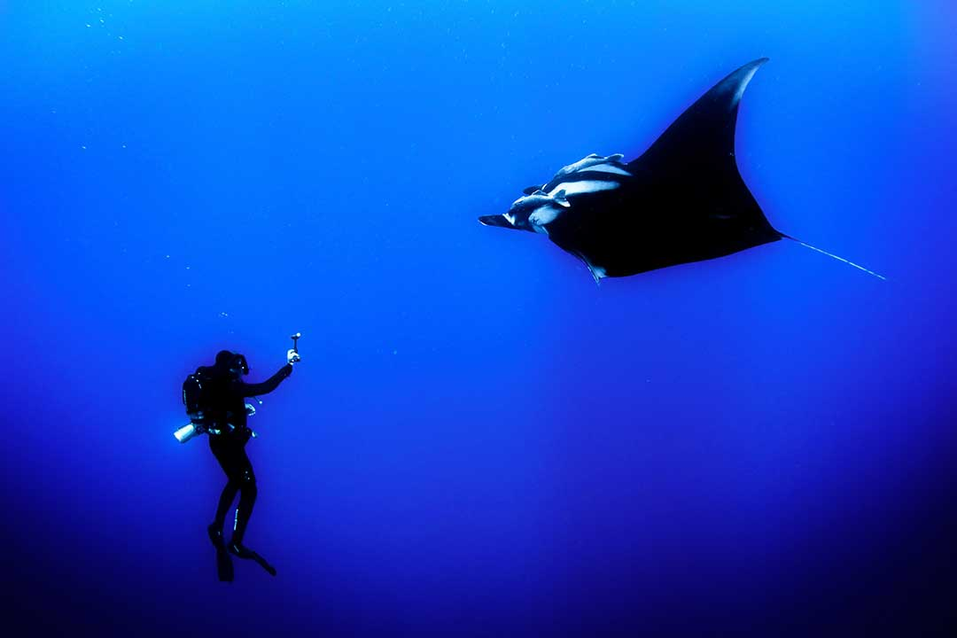 Underwater photography Etiquette: Follow the Basic Rules of Diving