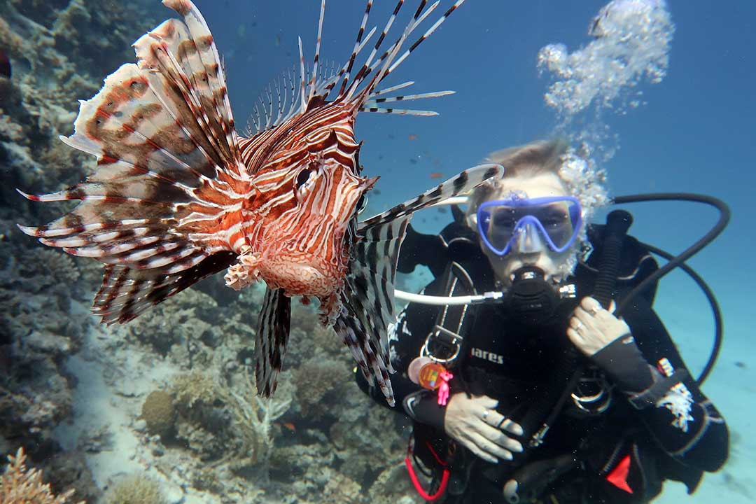 Underwater Photography Etiquette: offer to take someones photo