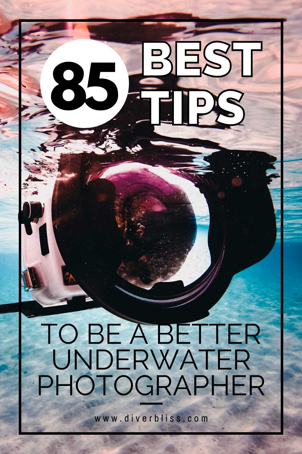 85 Best Tips to be a better underwater photographer