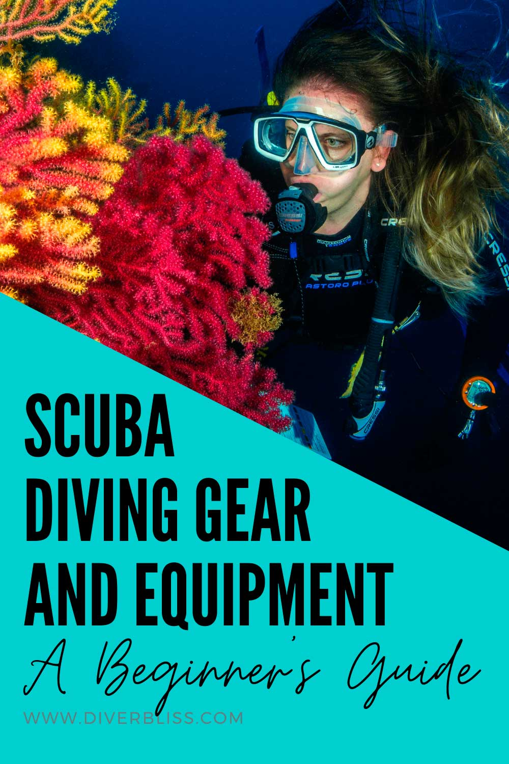a beginner's guide to scuba diving gear and equipment: