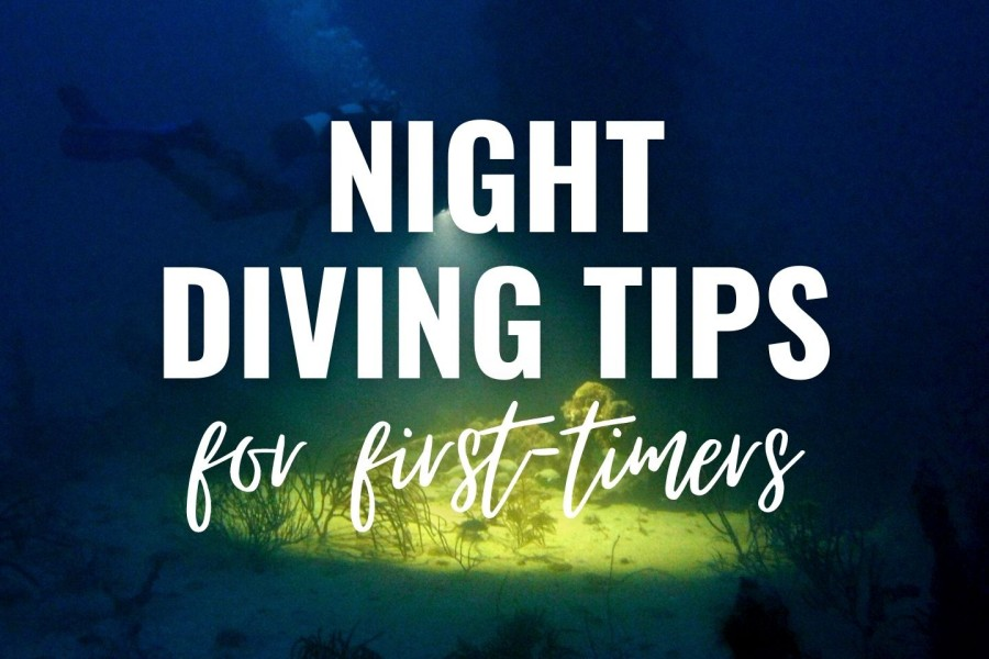 Night diving tips for first timers