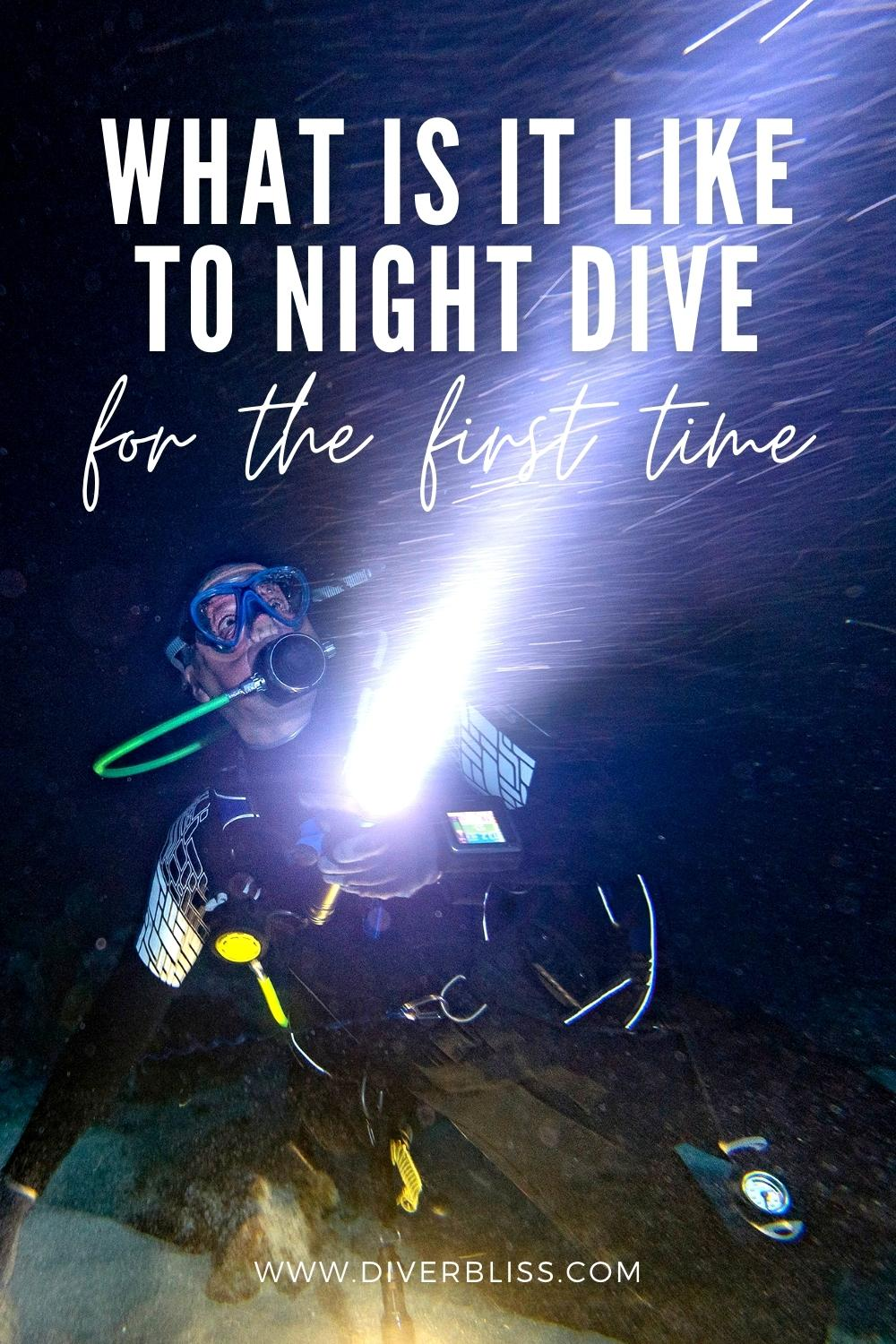 what is it like to night dive for the first time