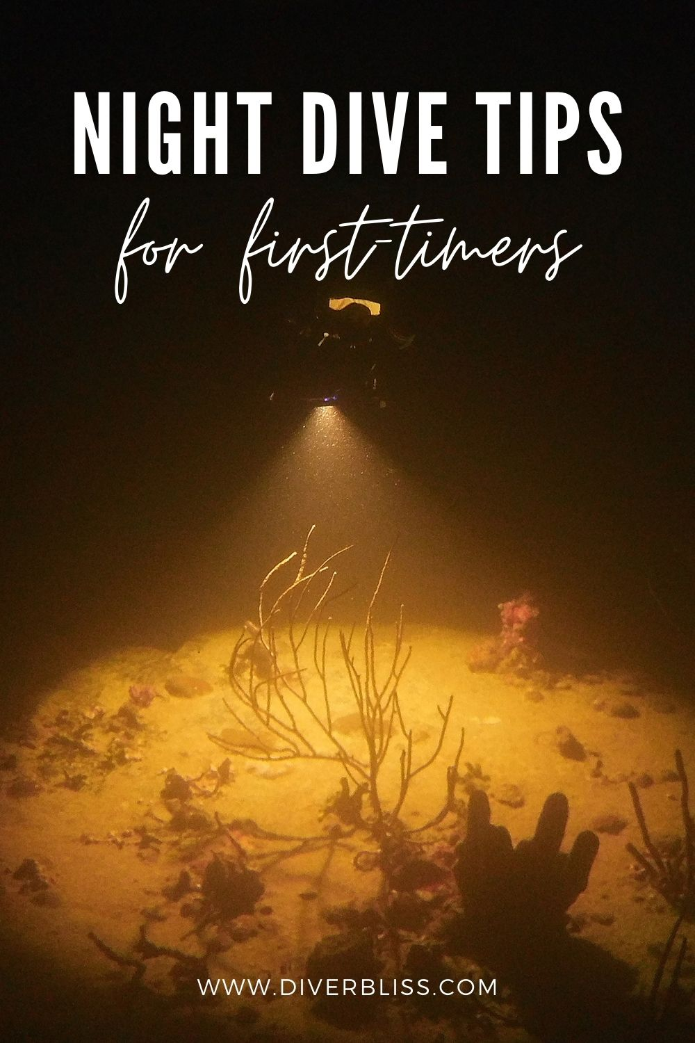 night dive tips for first timers