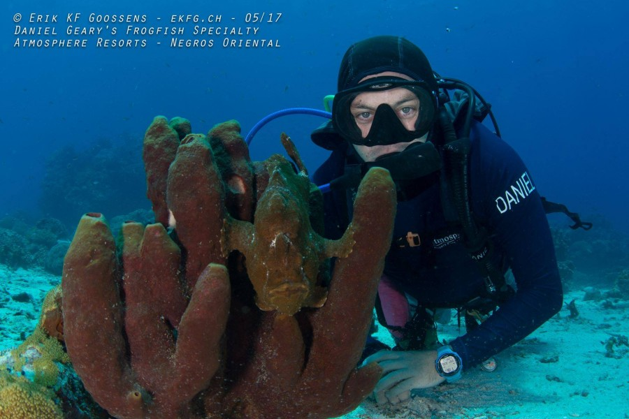 Be an expert at findings frogfishes after taking PADI Frogfish Specialist Course