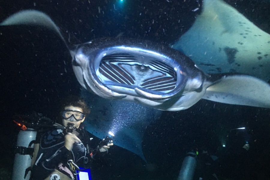 Night diving with Manta Rays in Hawaii is something you can look forward to when you take the PADI Manta Ray Diver Distinctive Specialty