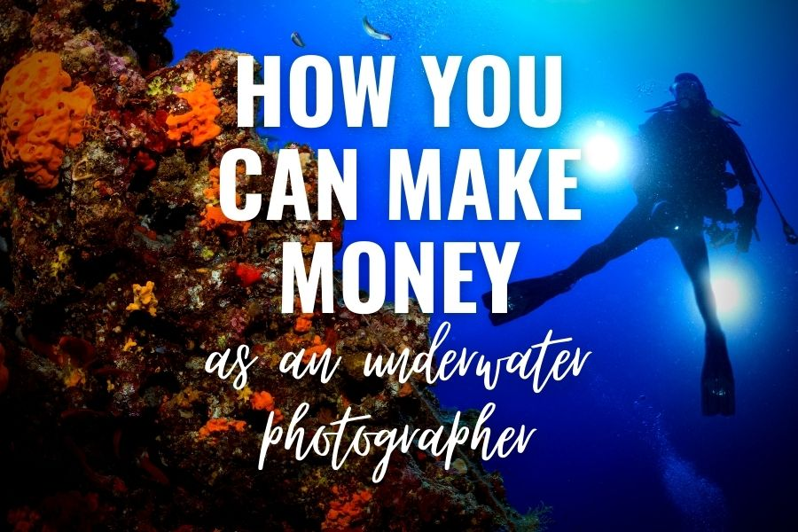 how you can make money as an underwater photographer
