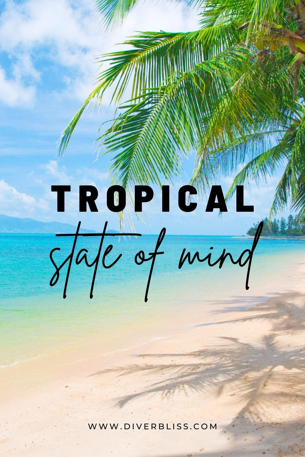 Tropical state of mind.