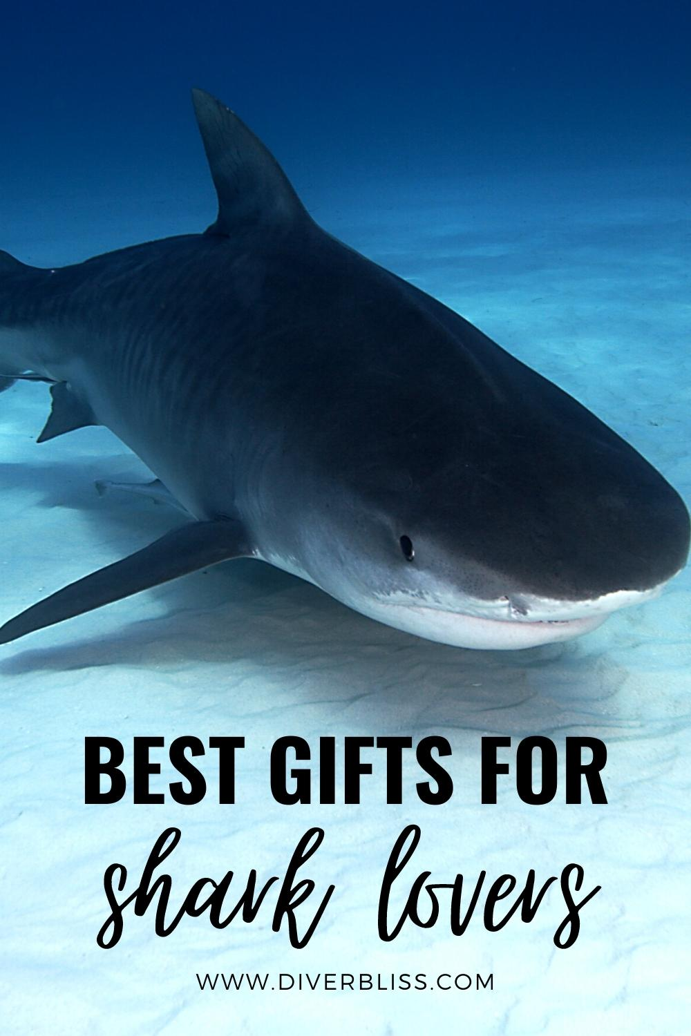 best gifts for shark lovers